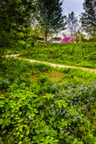 Flowers and a path at Wildwood Park in Harrisburg, Pennsylvania. Royalty Free Stock Photography