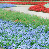 Flowers and paths. Beautiful flower beds and walking paths Stock Photo
