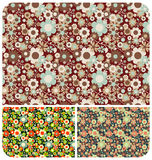 Flowers Pattern - set of 3 Royalty Free Stock Images