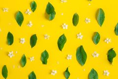 Flowers pattern texture stock photography