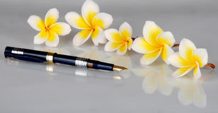Flowers and pen. Beautiful flowers and pen shadow in glass Royalty Free Stock Images