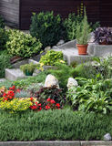 Flowers and perennial plants front of the house Royalty Free Stock Image