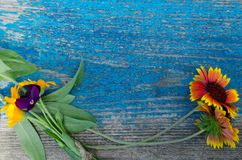 Flowers perimeter on a wooden painted board with cracks Royalty Free Stock Photo