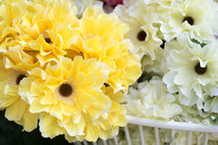 Flowers and petals background. Yellow and white flowers Stock Photography