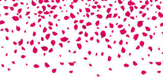 Flowers petals falling on vector transparent background Royalty Free Stock Image