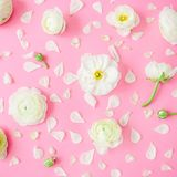 Flowers and petals on pink background. Flat lay, top view. Floral pattern Stock Images