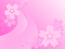 Flowers on a pink abstract background Stock Image