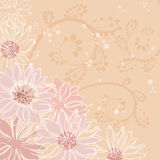 Flowers pink background Royalty Free Stock Photography