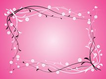 Flowers on pink background Stock Photography