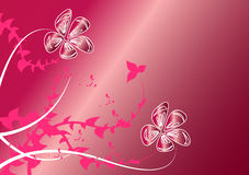 Flowers on pink background. Beautiful flowers on pink background Stock Photography