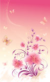 Flowers on pink background Stock Photos