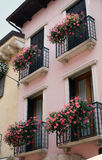 Flowers on pink balconies. Flowers on balconies of pink building in Bardolino Lake Garda Italy Royalty Free Stock Photography