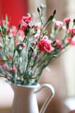 Flowers: pink carnations bouquet in a jug stock images
