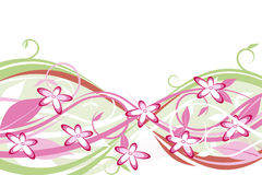 Flowers: pink and green. Pink flowers, pink leaves and green leaves Royalty Free Stock Image