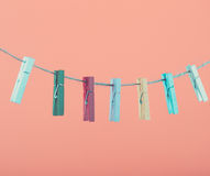 Flowers pinned on clothesline. Minimalism background. Blue, orange, gray background. High resolution photo. Royalty Free Stock Images