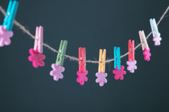 Flowers pinned on clothesline. Minimalism background. Blue, orange, gray background. High resolution photo. Stock Photo