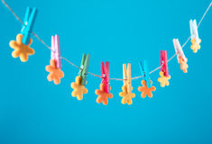 Flowers pinned on clothesline. Minimalism background. Blue, orange, gray background. High resolution photo. Stock Photos