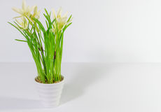 Flowers in plant pot. Artificials flowers in a white plant pot Royalty Free Stock Photography
