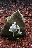 Memorial flowers Royalty Free Stock Photo