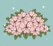 Flowers plants with natural leaves and petals vector illustration
