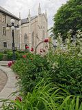 Flowers and plants near historical monuments in quebec city stock photos