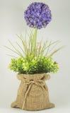 Flowers plastic. Flowers plastic in bag Stock Image