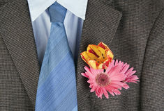 Flowers  in a pocket of an  brown jacket. Flowers  in a pocket of an old shabby brown tweed jacket and a dark blue tie, background. Concept of the provincial Stock Photos