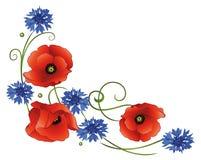 Flowers, poppies, cornflowers Stock Photo
