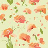 Flowers poppies floral pattern Stock Photo
