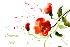 Flowers poppies red with splashes of watercolor Stock Image