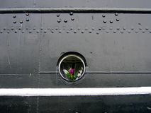 Flowers in Porthole. Flowers in the porthole of a docked ship Royalty Free Stock Image