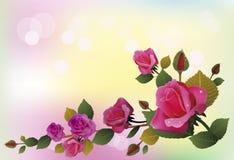 Flowers , postcard . valentine's day Stock Photo