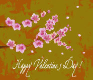 Flowers , postcard . valentine's day Stock Images