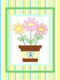 Flowers in a pot. Over striped background Stock Image