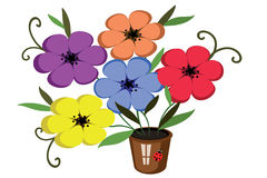 Flowers in the pot Royalty Free Stock Images