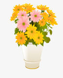 Flowers in pot Stock Image