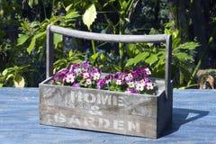 Flowers pot. A pot with floreal composition in the garden stock photos