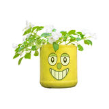 Flowers in a Pot with Funny Character Sticker Royalty Free Stock Photos