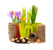 Flowers in pot and garden tools Royalty Free Stock Photos