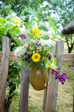 Flowers in pot Royalty Free Stock Image