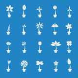 Flowers in pot icon set. Stock Photography