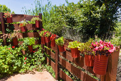 Flowers Pots Fence Royalty Free Stock Image