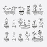 Flowers in Pots Hand Drawn Vector Illustration Stock Photography