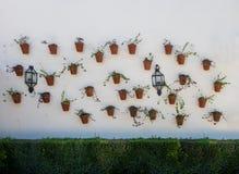 Flowers in pots in Palacio de Viana Cordoba Stock Images