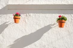 Pots and its shadows on wall Stock Image