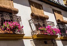 Flowers in pots on the windows in Cordoba streets, Spain. Andalusia stock photography