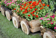 Flowers in pots in wooden box Royalty Free Stock Images
