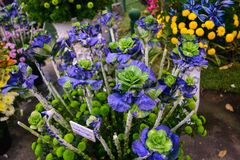 Flowers. A flowers preparing to sell to the customers Royalty Free Stock Photo