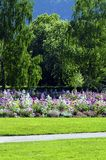Flowers public garden, trees, and green lawn Royalty Free Stock Images