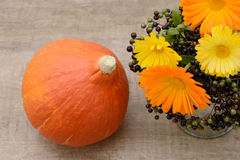 Flowers and pumpkin Royalty Free Stock Images